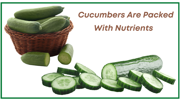 Cucumbers benefits - cucumbers are packed with nutrients